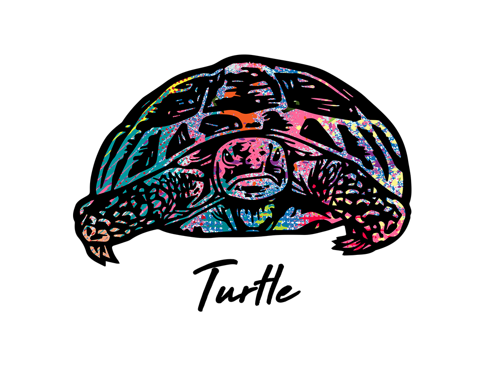 Turtle T Shirt Colorful Abstract