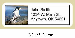 Falcon Address Labels