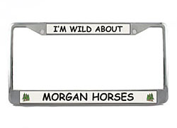 Morgan Horse License Plate Frame