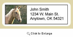 Palomino Horse Address Labels