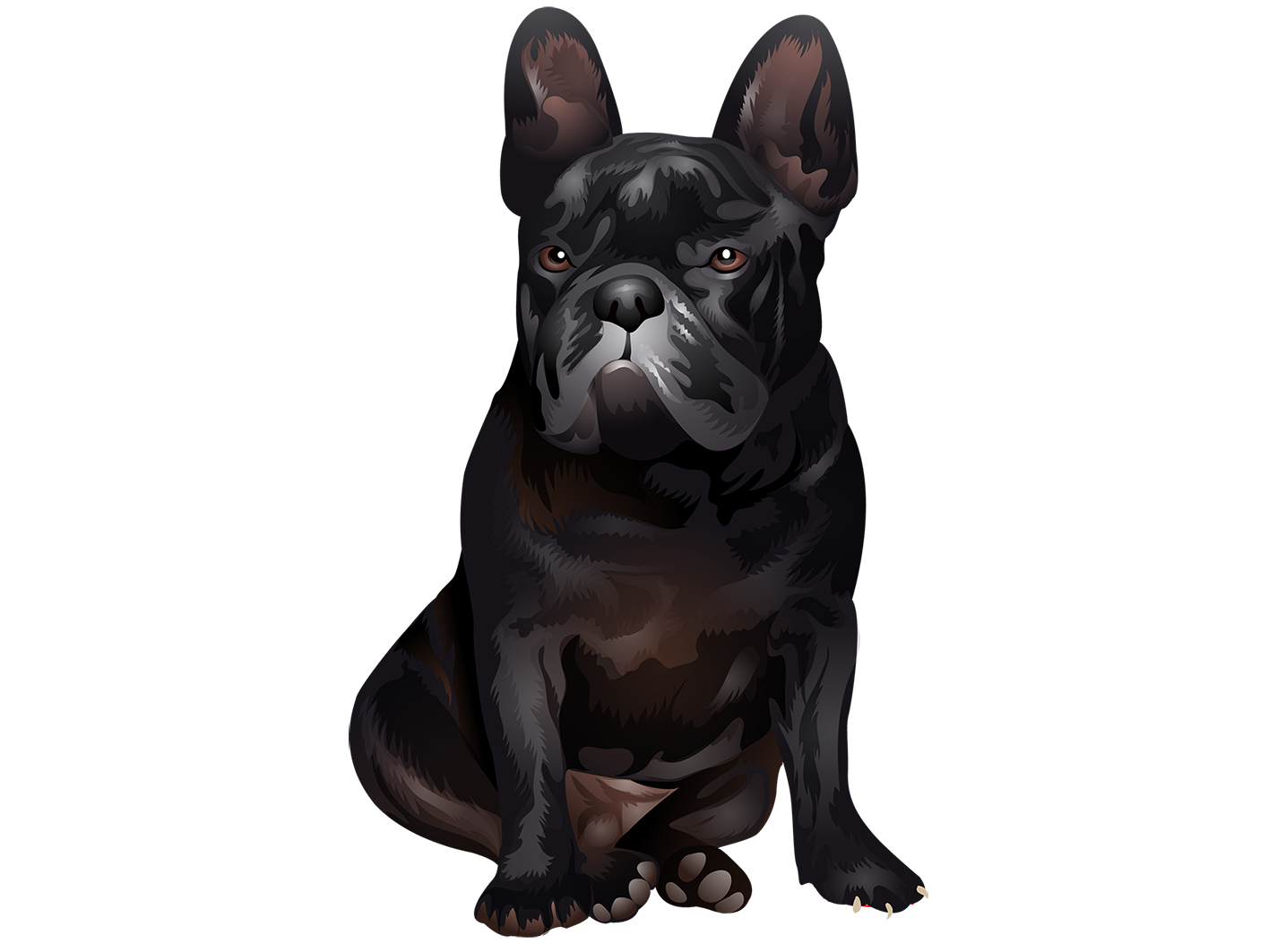 French Bulldog T-Shirt - Vibrant Vector