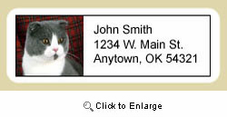 Scottish Fold Cat Address Labels