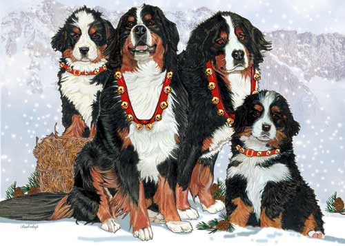 Bernese Mountain Dog Christmas Cards Entire Family