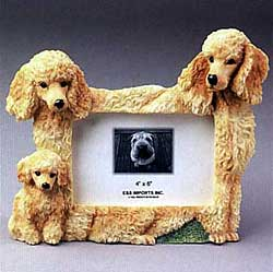 Apricot Poodle Picture Frame