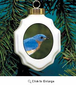 Bluebird Christmas Ornament Porcelain