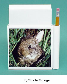 Rabbit Hold-a-Note