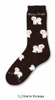 Bichon Frise Poses Socks