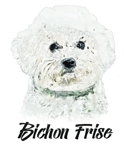 Bichon Frise T-Shirt - Vivid Colors