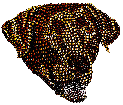 Chocolate Lab T-Shirt Rhinestone-Rhinestud