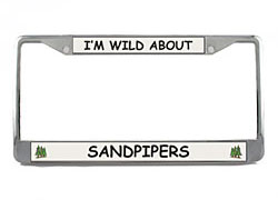 Sandpiper License Plate Frame