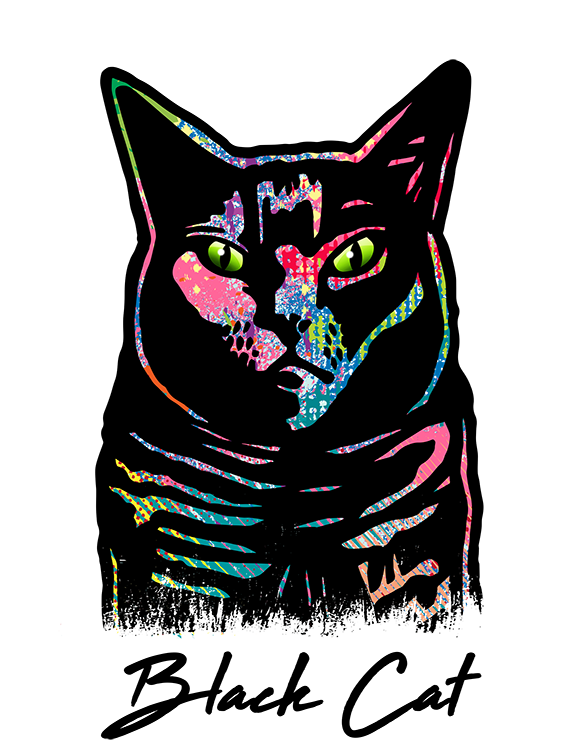 Black Cat T Shirt Colorful Abstract