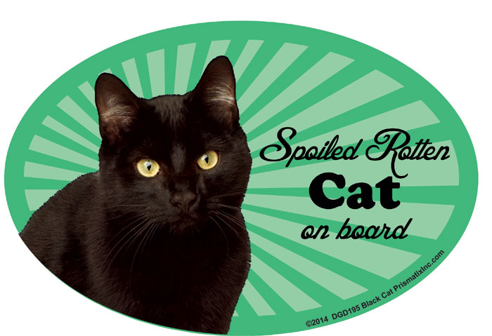 Black Cat Car Magnet - Spoiled Rotten