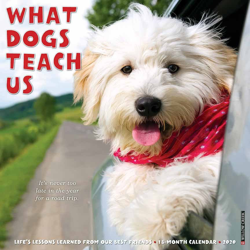 2020 What Dogs Teach Us Calendar Willow Creek