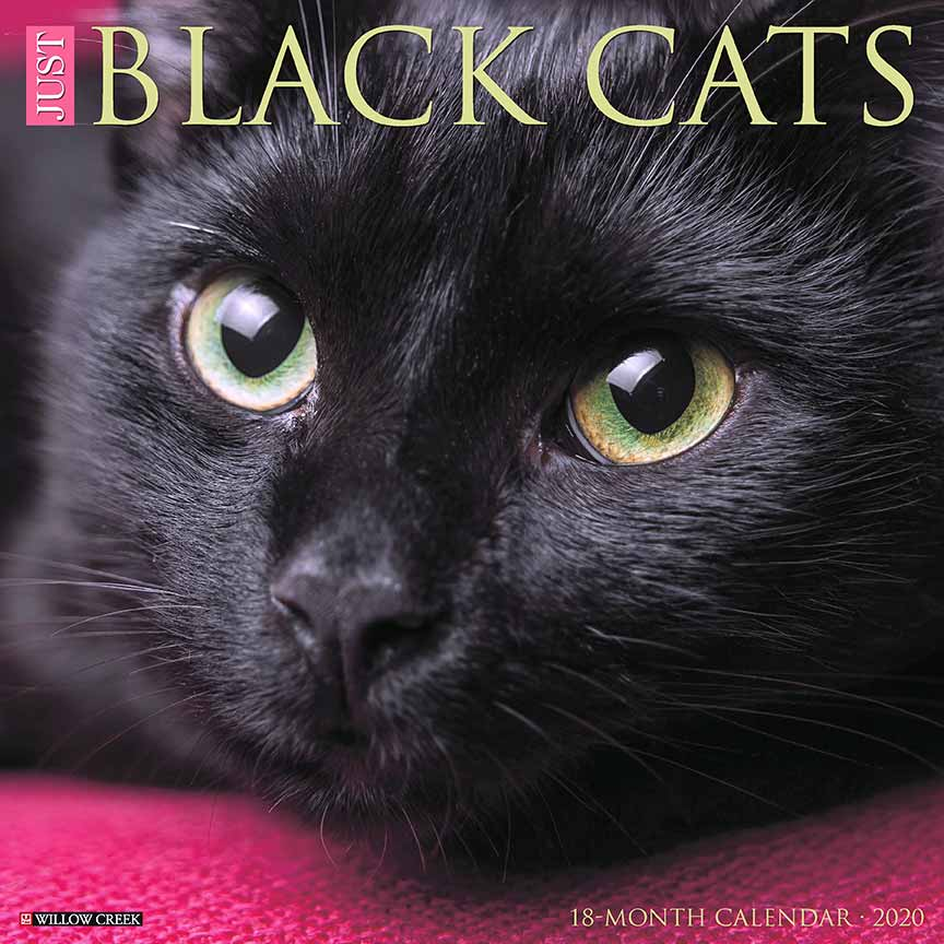 2020 Black Cats Calendar Willow Creek