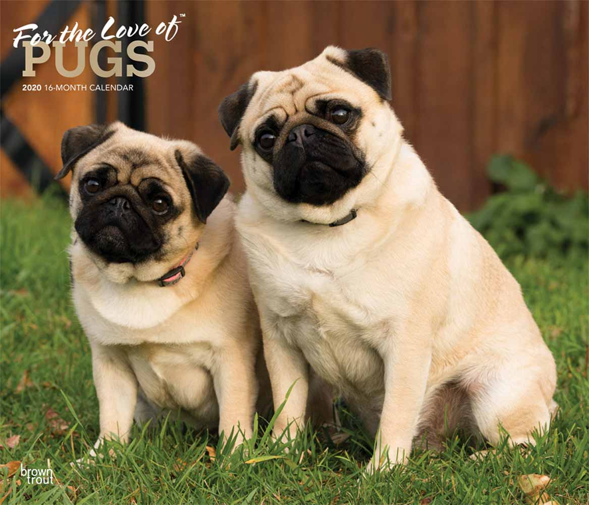 2020 For the Love of Pugs Deluxe Calendar
