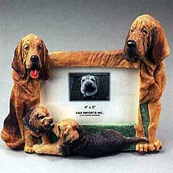 Bloodhound Picture Frame