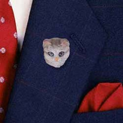 Tabby Cat Pin Hand Painted Resin