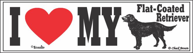 Flat-Coated Retriever Bumper Sticker I Love My