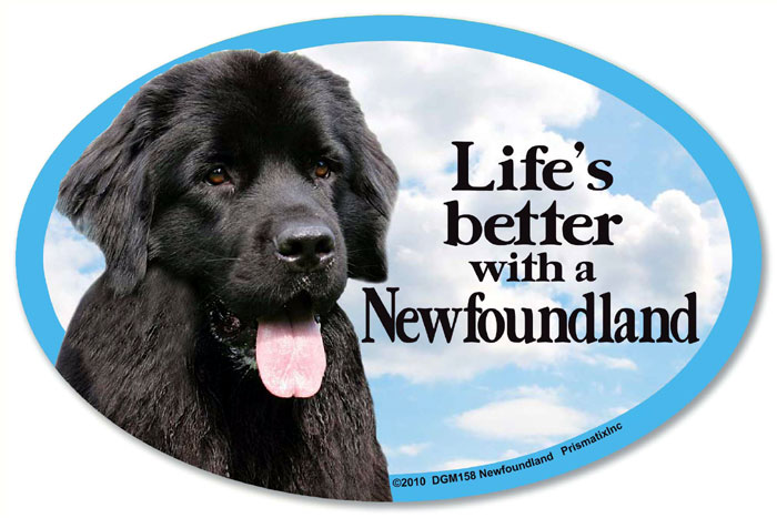Newfoundland Car Magnet - Life's Better