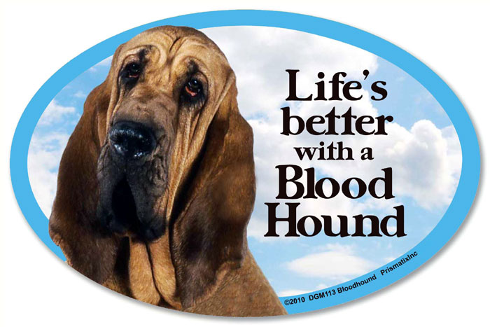 Bloodhound Car Magnet - Life's Better