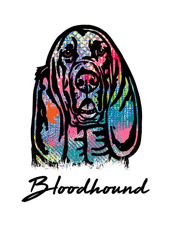 Bloodhound T Shirt Colorful Abstract