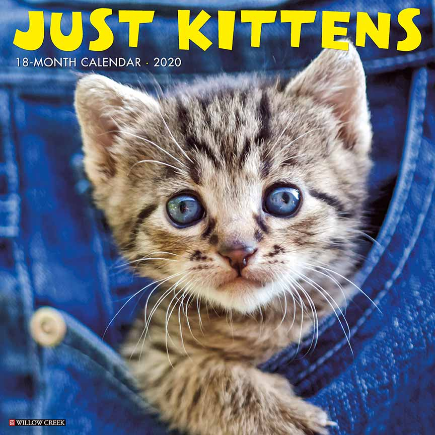 2020 Kittens Calendar Willow Creek