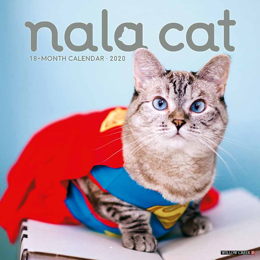 2020 Nala Cat Calendar Willow Creek