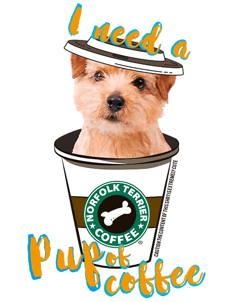 Norfolk Terrier T Shirt - Coffee Mug