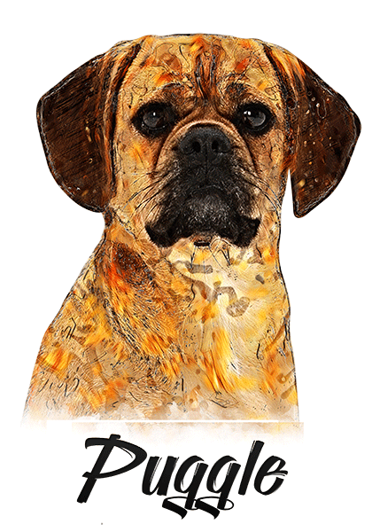 Puggle T-Shirt - Vivid Colors