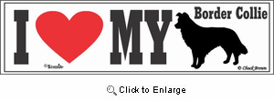Border Collie Bumper Sticker I Love My