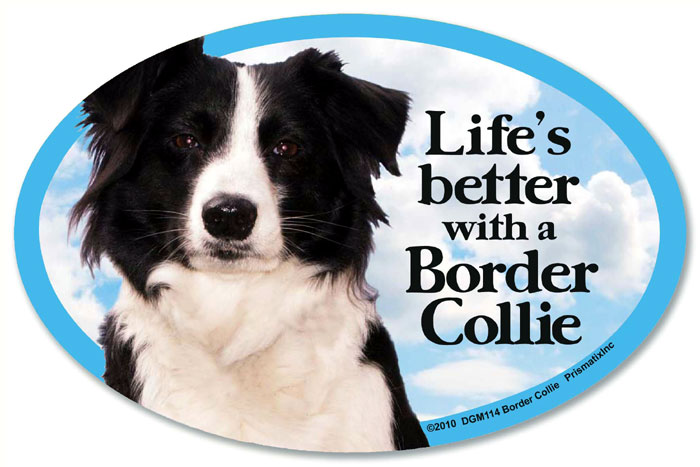 Border Collie Car Magnet - Life's Better