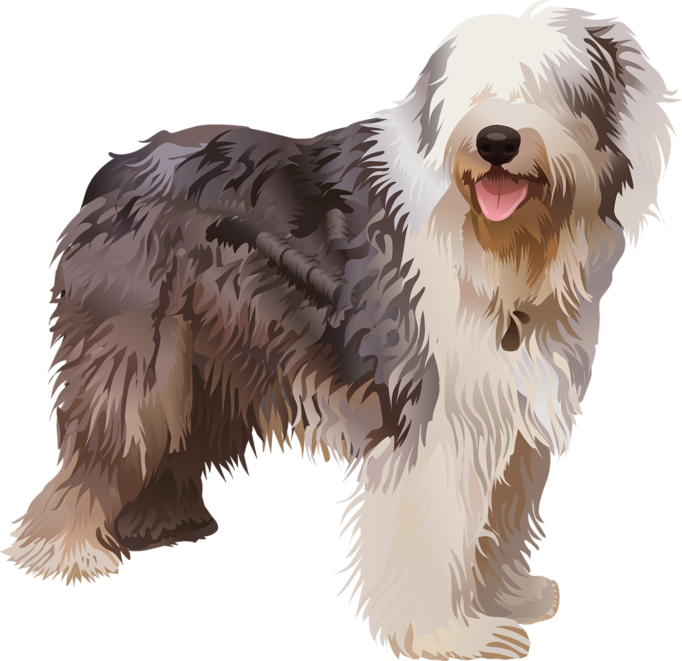 Old English Sheepdog T-Shirt - Vibrant Vector