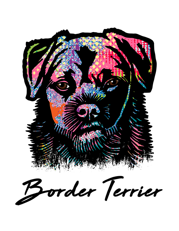 Border Terrier T Shirt Colorful Abstract