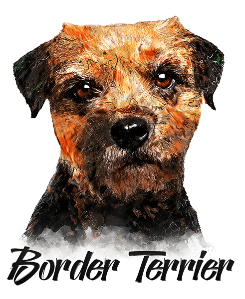 Border Terrier T-Shirt - Vivid Colors