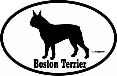 Boston Terrier Bumper Sticker Euro