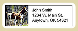 Paint Horse Address Labels