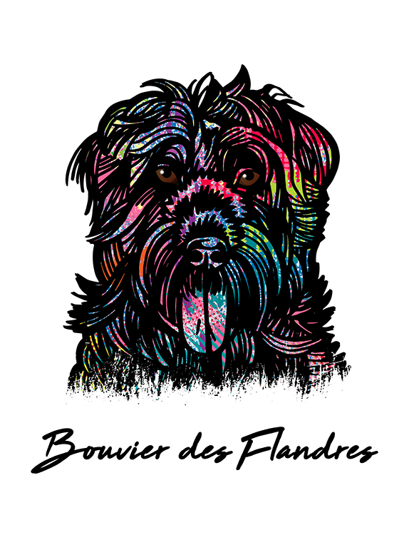 Bouvier Des Flandres T Shirt Colorful Abstract