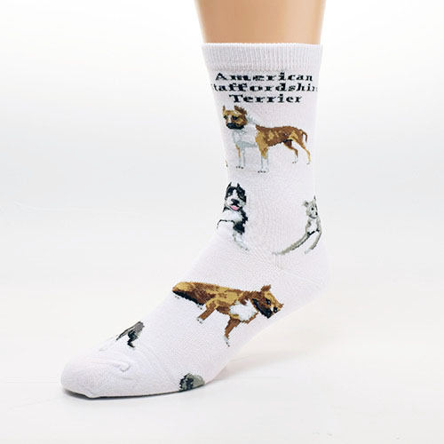 American Staffordshire Terrier Poses 2 Socks