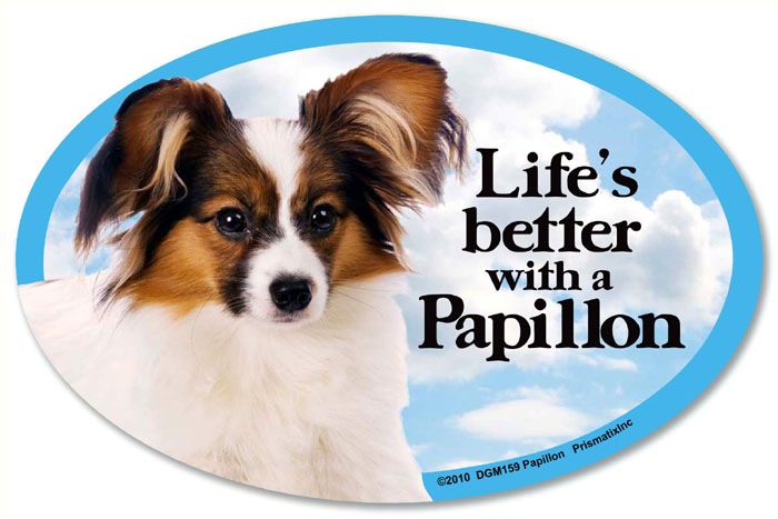 Papillon Car Magnet - Life's Better
