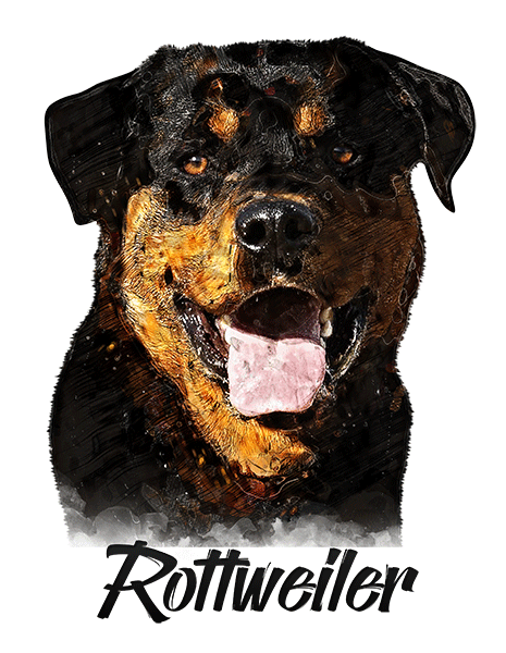 Rottweiler T-Shirt - Vivid Colors