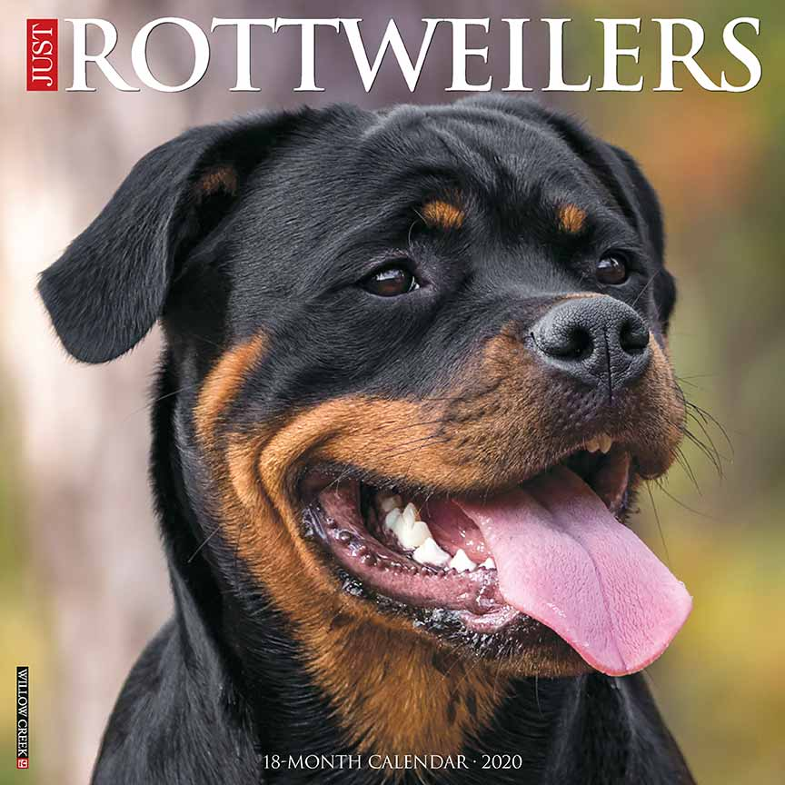 2020 Rottweilers Calendar Willow Creek