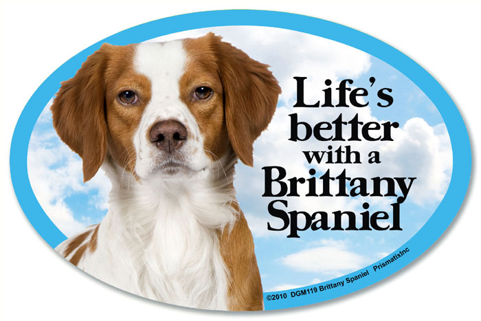 Brittany Car Magnet - Life's Better