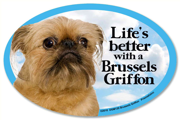 Brussels Griffon Car Magnet - Life's Better