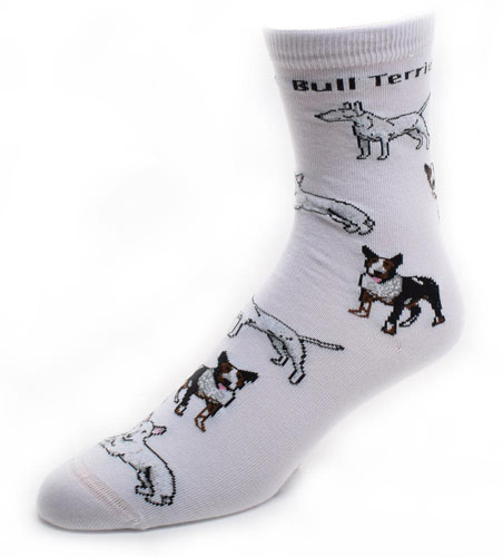 Bull Terrier Socks Poses 2