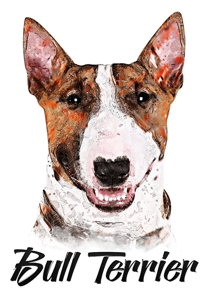 Bull Terrier T-Shirt - Vivid Colors