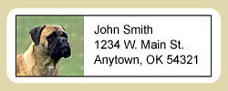 Bullmastiff Address Labels