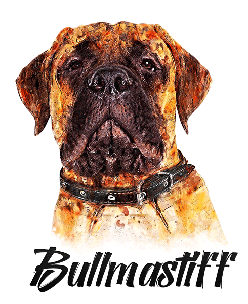 Bullmastiff T-Shirt - Vivid Colors