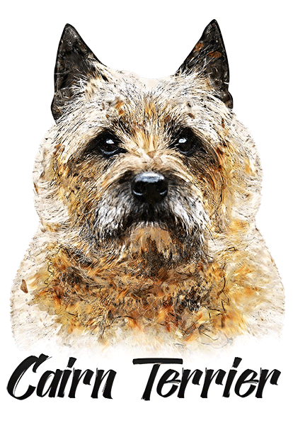 Cairn Terrier T-Shirt - Vivid Colors