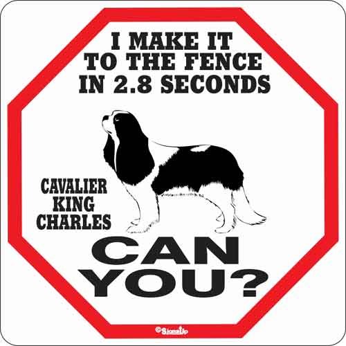 Cavalier King Charles 2.8 Seconds Sign