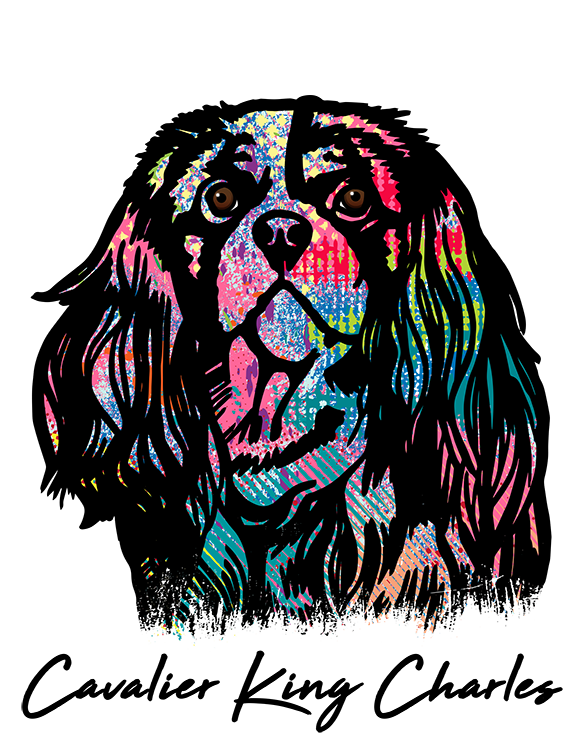 Cavalier King Charles Spaniel T Shirt Colorful Abstract